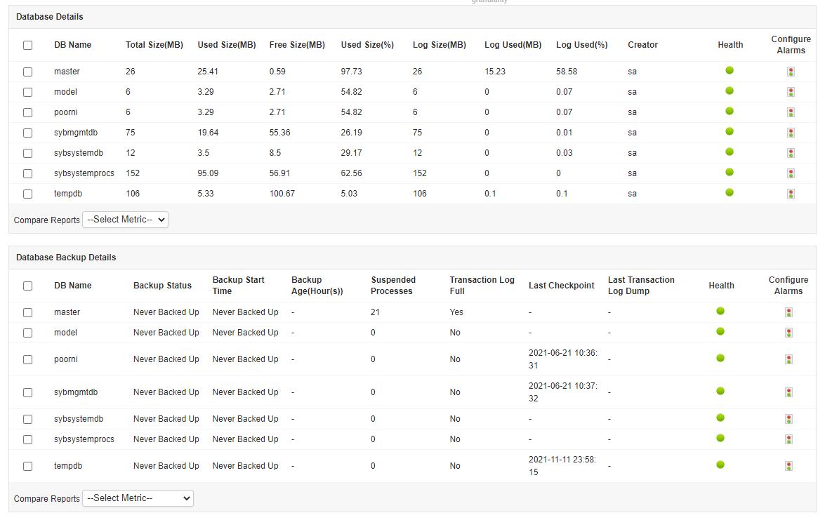 Sybase データベース情報 (スナップショット画面)